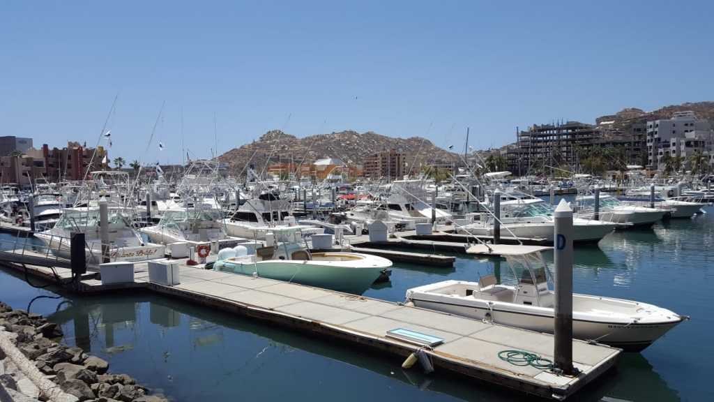 Grand Solmad Vacation Club Reviews Touring the Los Cabos Marina as a Family Friendly Activity (2)
