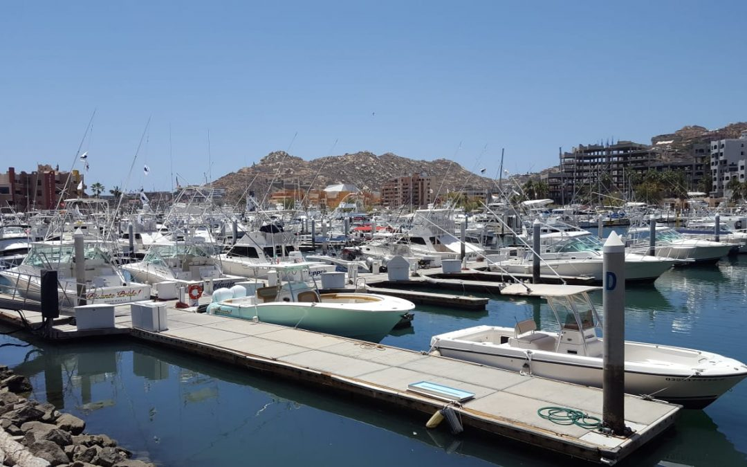 Grand Solmar Vacation Club Reviews Touring the Los Cabos Marina as a Family Friendly Activity