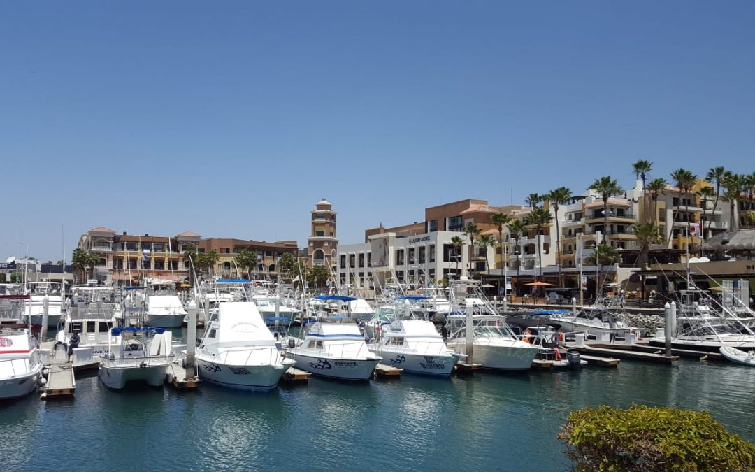 Grand Solmar Vacation Club Reviews Two Restaurants on the Marina in Cabo San Lucas