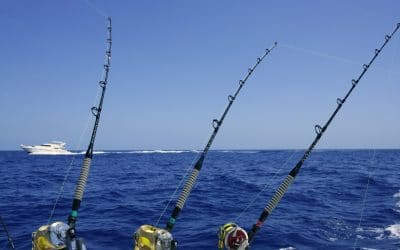 Grand Solmar Vacation Club Tricks and Tips When Fishing in Los Cabos