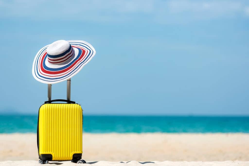luggage sanitized
